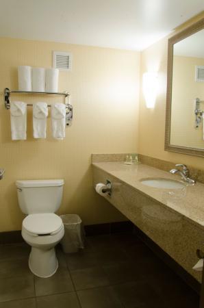Kalamazoo, MI: Bath room of Guest Room