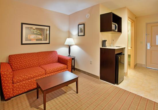 Holiday Inn Express Hotel & Suites Andover/East Wichita: Guest Room