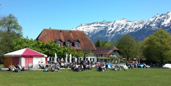 Restaurant Neuhaus zum See: Grosse Liegewiese mit Getränkebar beim Restaurant Neuhaus