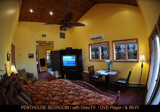 """The Grouse House Bed and Breakfast: 45"""" Sony TV with DVD and Free WI FI"""