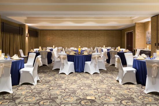 Hilton Garden Inn Houston NW/Willowbrook: Ballroom