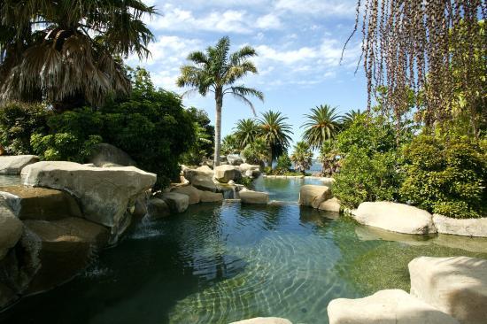 Γουαϊτάνγκι, Νέα Ζηλανδία: Pool