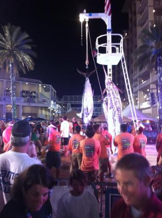 Love going to events & festivals at The Wharf!