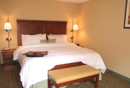 Hampton Inn Elkins: Standard Guest Room