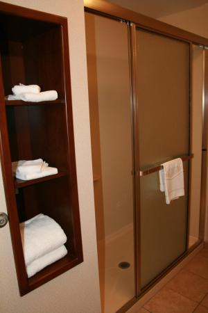 Hampton Inn & Suites Palm Coast: Step-in Shower
