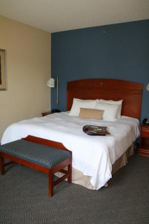 Hampton Inn Gloucester : Single King Room
