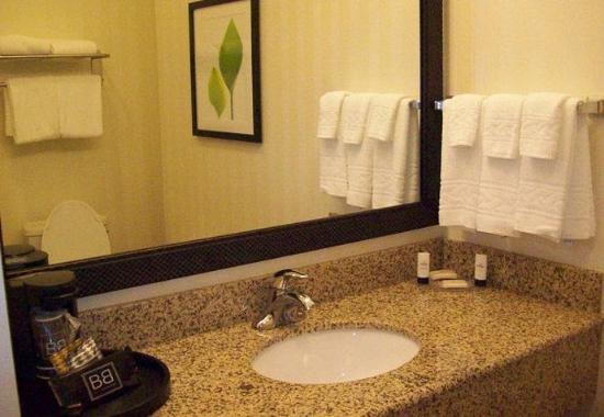Strasburg, فيرجينيا: Guest Bathroom