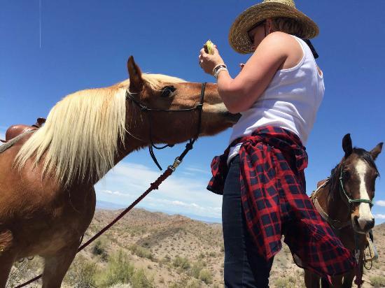 Yucca, AZ: IMG-20160501-WA0010_large.jpg