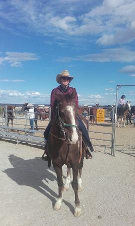 Yucca, AZ: 20160429_164940_large.jpg