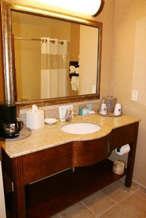 Hampton Inn Leesburg - Tavares: Standard Bathroom