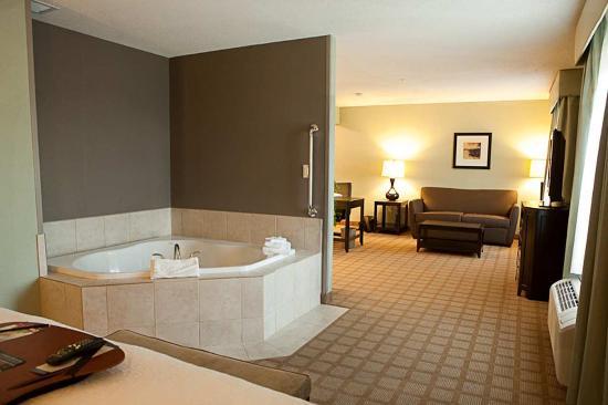Hampton Inn Suites Detroit Canton