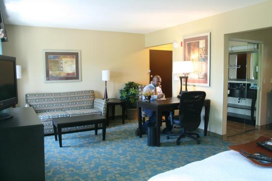 Hampton Inn & Suites Beach Boulevard/Mayo Clinic Area: King Studio Suite
