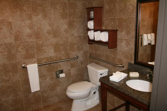 Hampton Inn & Suites Brenham: ADA Guest Bathroom
