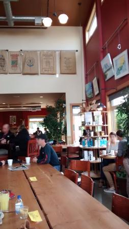 Buzz Coffee House: 店内の様子1