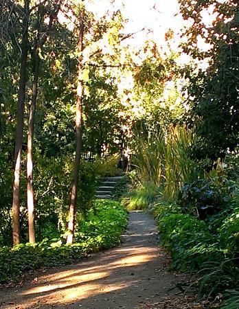 idaho botanical garden shaded path boise botanical gardens - Idaho Botanical Garden