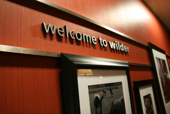 Welcome to Wilder