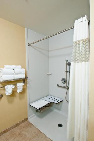 Hampton Inn & Suites Mahwah: Roll-In Shower