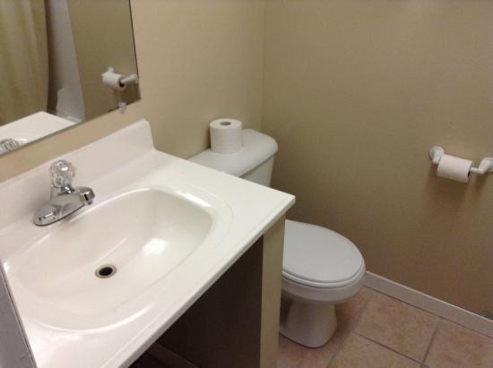 Diamond Motor Inn: Basin and toilet