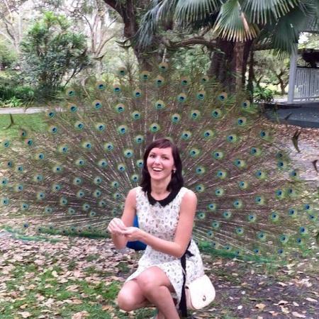 Flamingo Gardens: Павлиний хвост