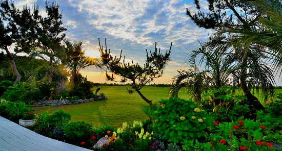 Wrightsville Beach, Carolina del Norte: Garden and Lawn
