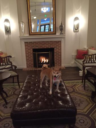 Bedford, Pensilvania: Dog Friendly