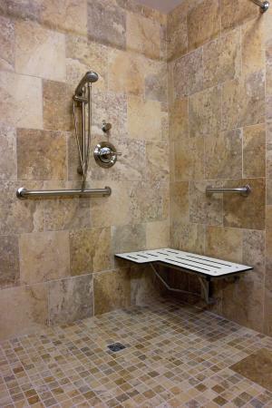 Hampton Inn Oxford University Area: Accessible Roll-In Shower