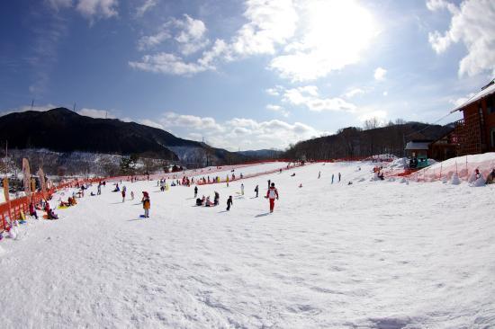 めいほう スキー 場