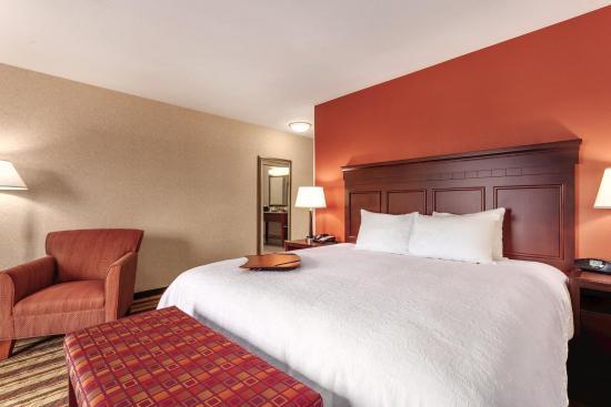 Southgate, MI: 1 King Guest Room