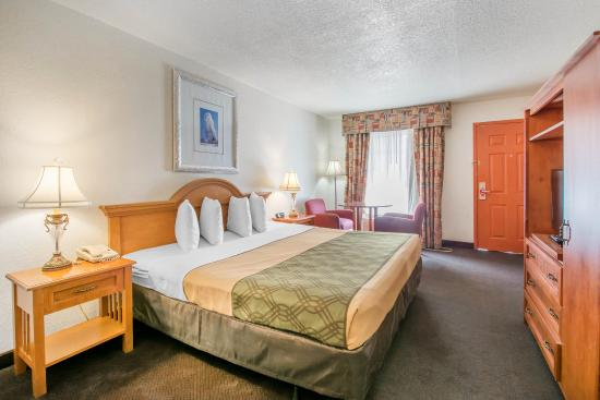Econo Lodge Airport at Raymond James Stadium: Guest Room