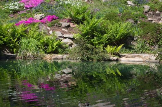 Ohme Gardens: Several ponds to enjoy
