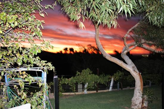 Willunga, Australia: Wood fired hosted Pizzeria, check out our spectacular sunsets.