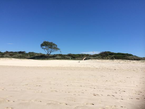 Byron Bay Rainforest Resort: Tallow Beach