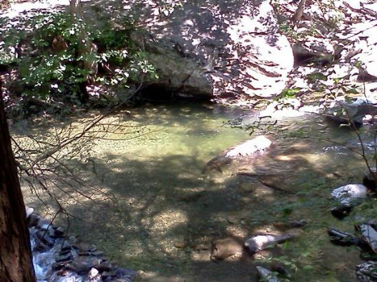 Taconic State Park Campgrounds: IMG340_large.jpg