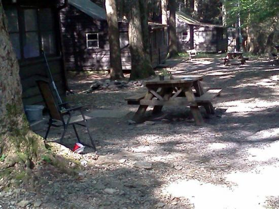 Taconic State Park Campgrounds: IMG334_large.jpg