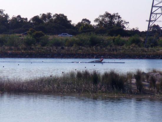 Armadale, Australia: A rower on the regatta course