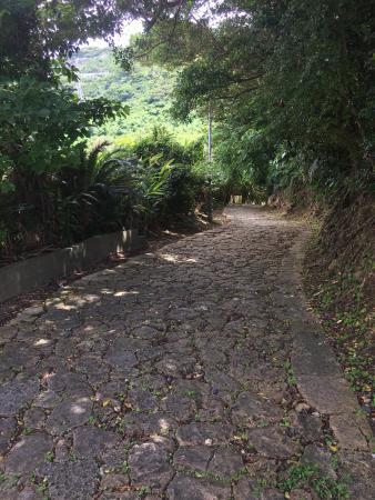 Toyamano Ishidatatami Road