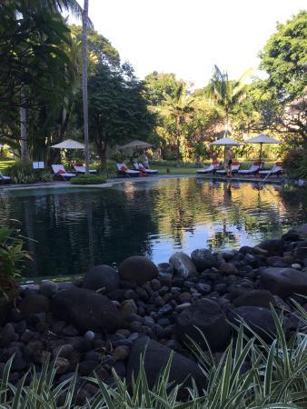 Segara Village Hotel: photo3.jpg