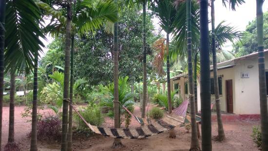 Shivshrushti Resort : shiv shrushti resort