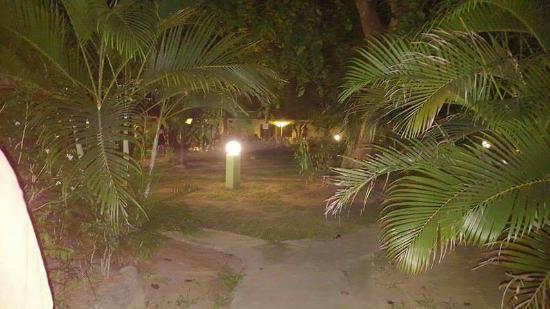 Green Village Langkawi: received_10154005484399845_large.jpg