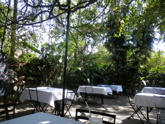 The Havelock Place Bungalow: Alfresco dining area in the tropical garden