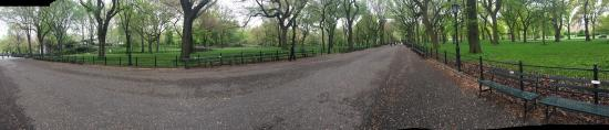 Central Park Sunset Tours: photo0.jpg