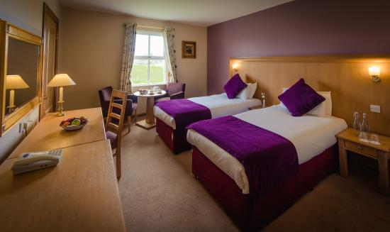 Roganstown Hotel and Country Club: Classic Twin Room
