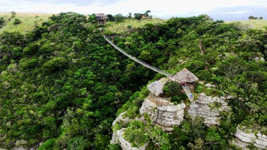 Lake Eland Game Reserve, Sudáfrica: Brave enough?Come and walk the 80m suspension bridge and over-come your fear AND enjoy the views