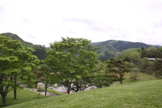 Kainan, Japan: 芝生の丘から