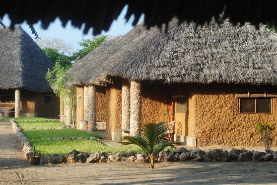 Tishi's Farm