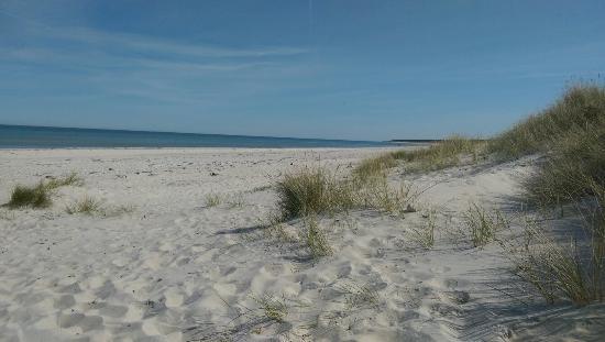 DCU-Camping Rorvig Strand