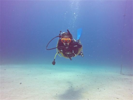 bahía de Simpson, St. Maarten: Wonderful picture Damien took and emailed to me after my dive