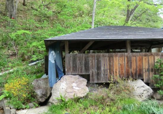 Tenei-mura, Japón: 露天風呂の外観