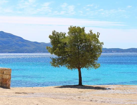 Fotos de Formentor - Imágenes de Formentor, Mallorca - TripAdvisor