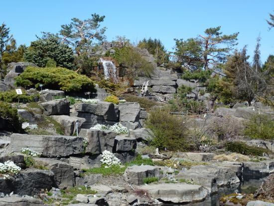 Montreal Botanical Gardens: Alpine Garden. April 2016.